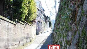 夏目漱石『こころ』の散歩道